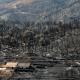 Incendio forestal en Portugal se estabiliza; sigue activo