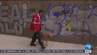 Binomios Caninos Tareas Rescate Sismo CDMX