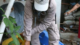 Dengue aumenta en Tapachula y Tuxtla Gutiérrez, Chiapas