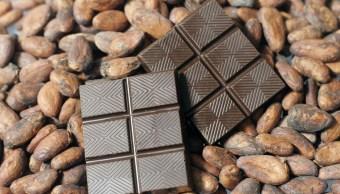 Comer chocolate diario beneficia al cerebro: estudio