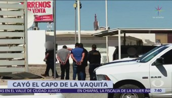 Detienen a Óscar Parra, presunto líder de grupo totoaba
