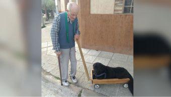 fabrica-carrito-perro-discapacitado-viral-redes-uruguay