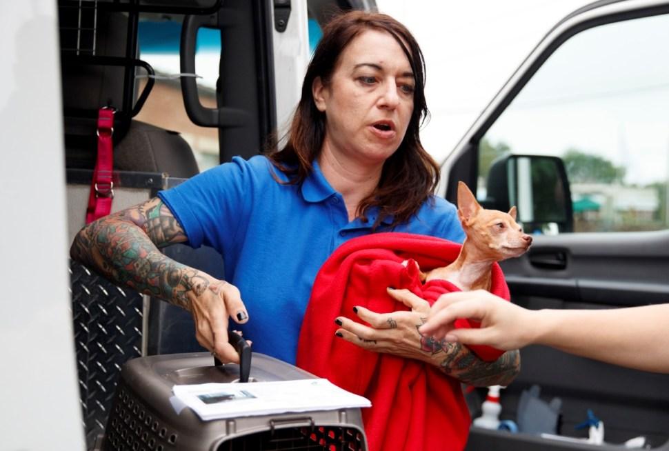 Huracán Florence: Información que debes tener a la mano