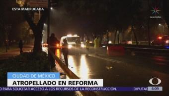 Hombre muere atropellado en Paseo de la Reforma, CDMX