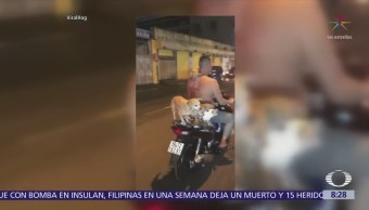 Hombre transporta en motocicleta a 5 cachorros en Vietnam