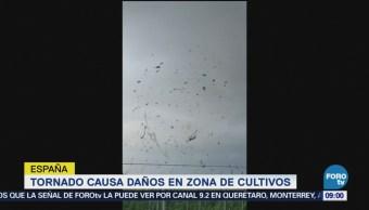 Tornado Causa Daños Zona Cultivos España