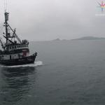 Mar de Cortés, biodiversidad amenazada por pesca incidental