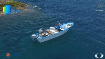 Comunidades del Mar de Cortés restauran ecosistemas