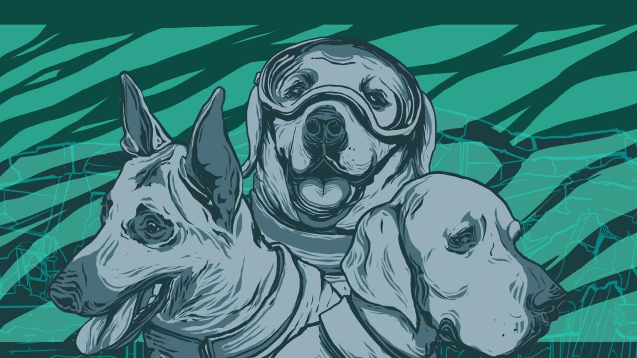 perros-rescatistas-sismo-19-septiembre-2017-perrita-frida