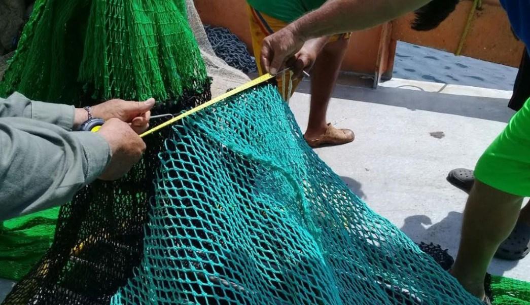 Profepa certifica 30 embarcaciones camaroneras en Oaxaca