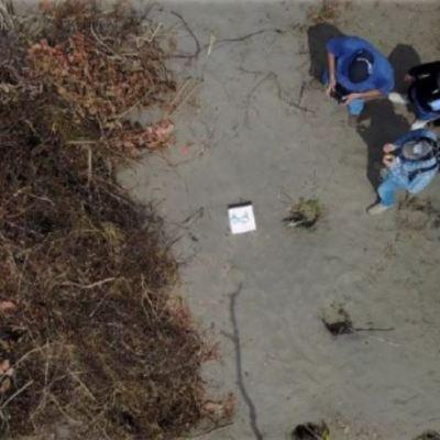Restos en fosas clandestinas de Veracruz serán identificados por genética