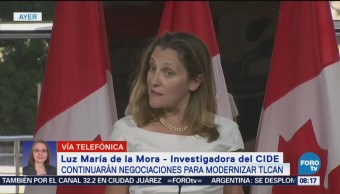Continuarán Negociaciones Modernizar Tlcan Luz María De La Mora, Investigadora Del Cide