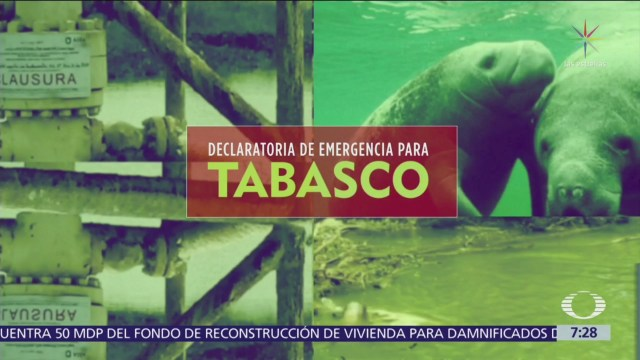 Sigue emergencia en Tabasco por muerte de manatíes