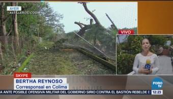 Tormenta causa daños en el 90% de los cultivos en Astilleros, Colima
