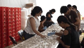 UNAM rescata murales en conventos afectados por sismo 19S