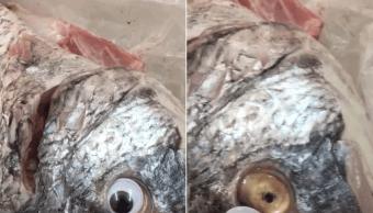 Vendían Pescado Ojos Falsos Para Ocultar Mal Estado, Pescado Con Ojos Falsos, Pescado Con Ojos De Plastico, Pescadería Kuwait, Kuwait, Pescado