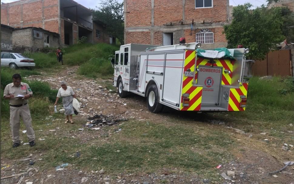 Ataque de abejas en Zapopan, Jalisco, deja 10 lesionados
