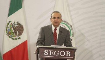 Secuestros disminuyen 54% en el país, dice Navarrete Prida