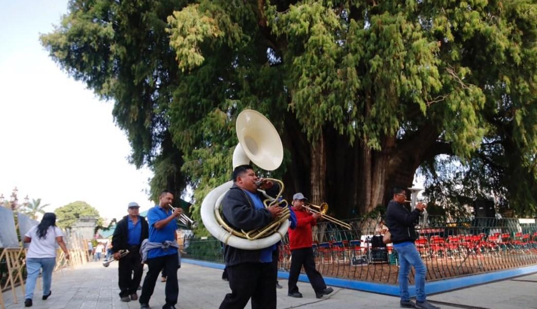 Árbol del Tule en Oaxaca; realizan ritual y verbena