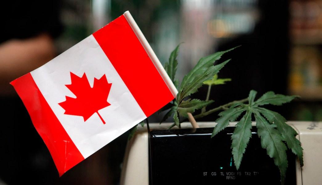 Canadá compartirá experiencia de uso de marihuana con México