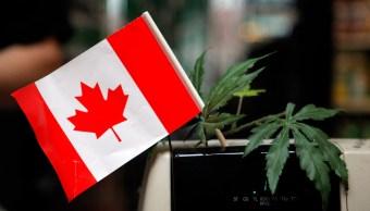 Canadá Marihuana Primer Día Legalización Desabasto
