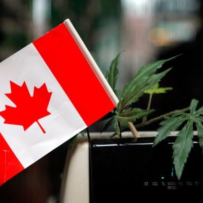 Canadá compartirá experiencia en debate de uso de la marihuana con México