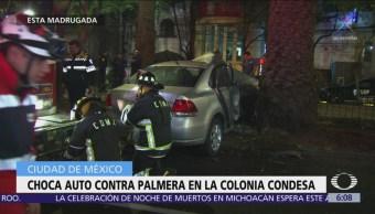 Choca auto contra palmera en la colonia Condesa