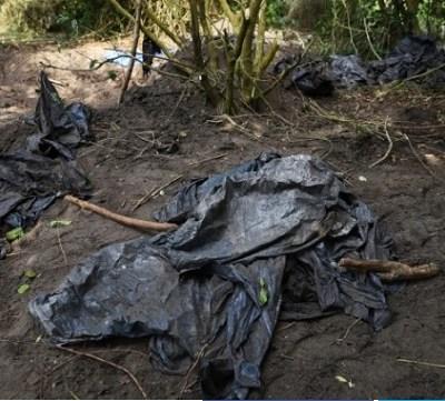 Desaparecidos en Veracruz: Familiares mantienen sus esperanzas en muestras de ADN