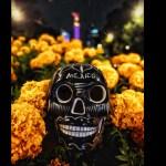 8 eventos y actividades para celebrar Día de Muertos en CDMX