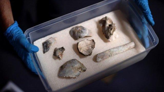 Recuperan cráneo de Luzia entre escombros de Museo de Brasil