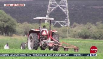 Impulsan cultivos en San Luis Potosí, apoyados en la tecnología