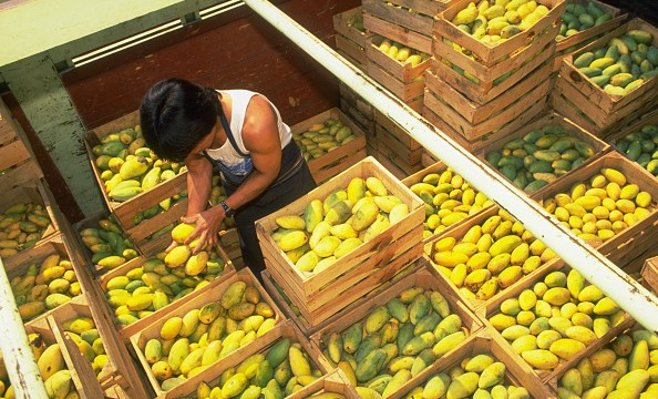 Inflación interanual desacelera, se ubica a 4.94%: INEGI