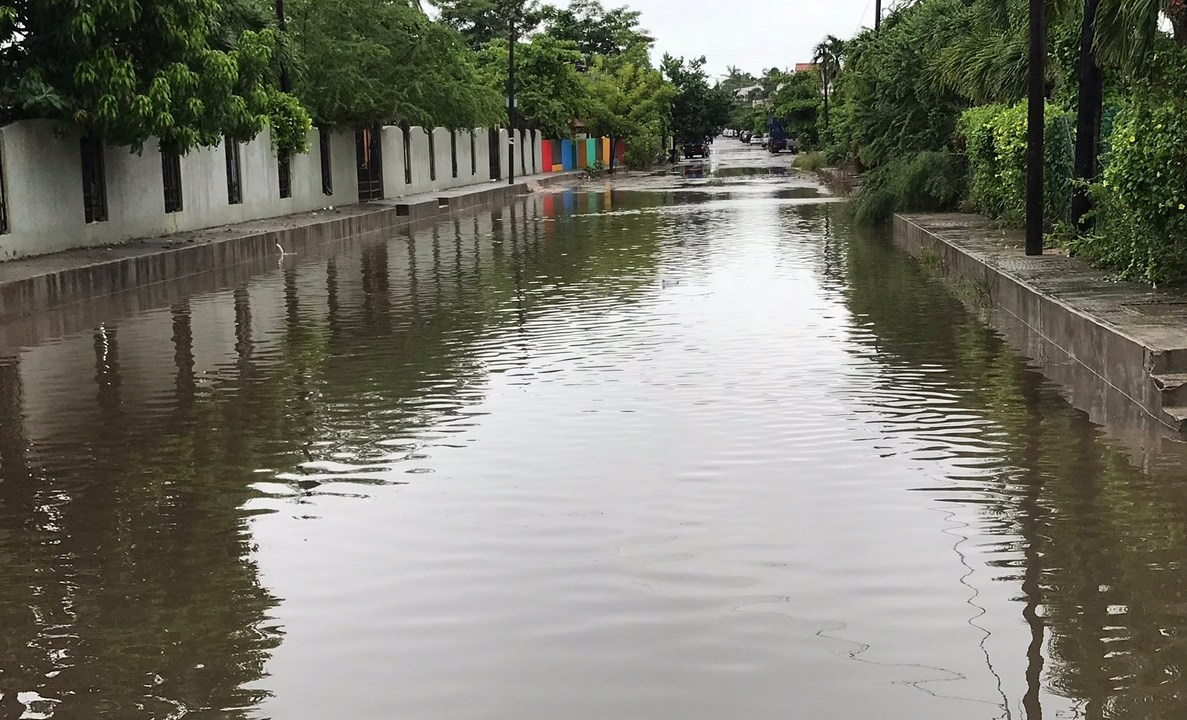 Clima Jalisco Willa deja cocodrilos sueltos Barra de Navidad