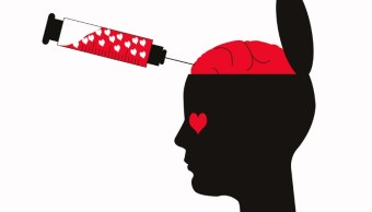 Kisspeptina, la hormona afrodisíaca que despierta el deseo sexual