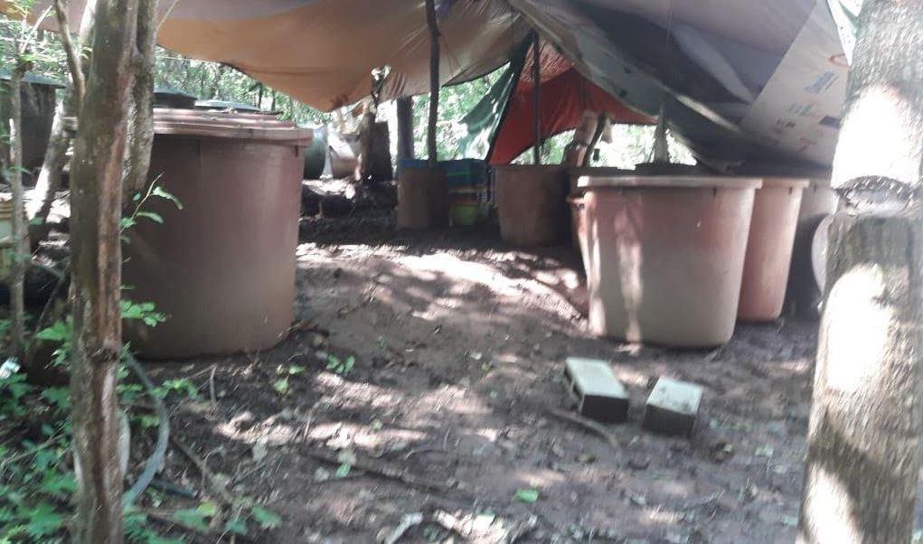 Destruyen cuatro laboratorios clandestinos en Culiacán