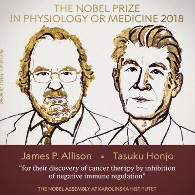 Estadounidense Allison y japonés Honjo ganan el Nobel de Medicina