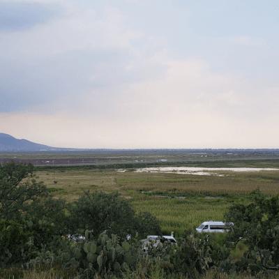 Atenco advierte movilizaciones contra avance del NAIM