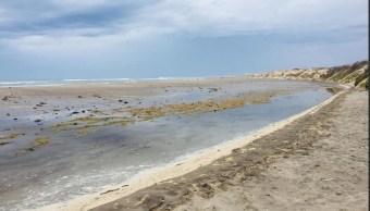 Por tormenta 'Sergio' declaran emergencia en tres municipios de BCS