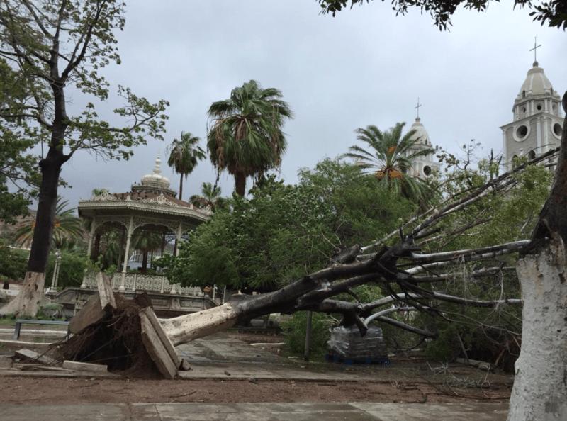sergio daños materiales guaymas sonora proteccion civil