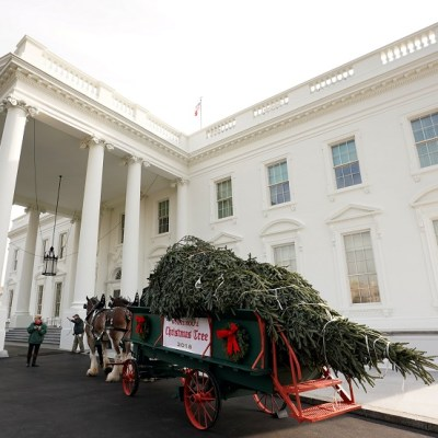 Trump da la bienvenida al árbol de Navidad de la Casa Blanca