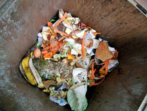 El bote de basura contiene restos orgánicos que pueden permanecer dentro por más tiempo de lo que creemos (GettyImages)