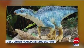 Extra, Extra: Descubren familia de dinosaurios
