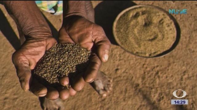 La agricultura debe transformarse, advierten expertos