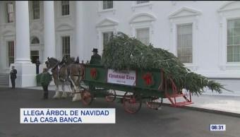 #LoQueVimosEnLaRed: Llega árbol de navidad a la Casa Banca