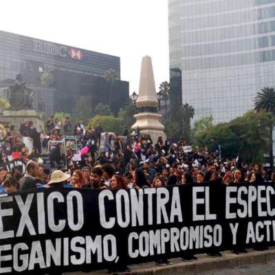 Marchan en CDMX contra el maltrato y la explotación animal
