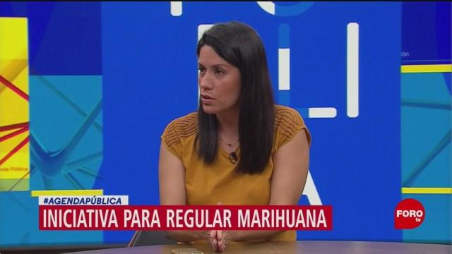 México Unido Contra la Delincuencia analiza regulación de marihuana
