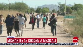 Migrantes se dirigen a Mexicali, Sonora