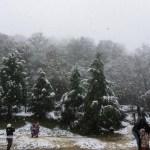 El invierno llegó a Nuevo León; primera nevada sorprende a los habitantes