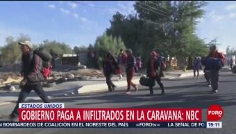 Gobierno Estadounidense Paga Infiltrados Caravana Migrante