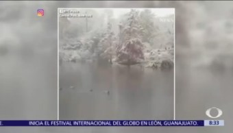 Cae la primera nevada en Central Park